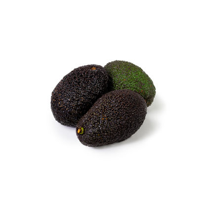 Picture of AVOCADO MOGEN MX/CO 24ST